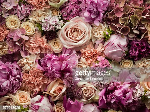 Fresh cut flowers, detail