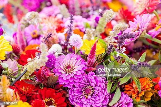 Fresh cut summer flowers on display at a farmer's market.