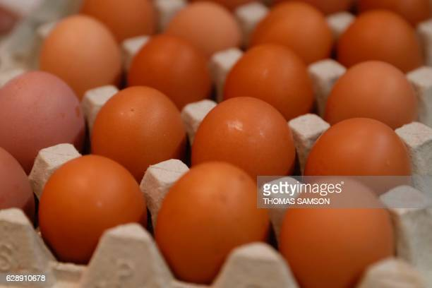 Fresh eggs are pictured in an hypermarket store of French retail giant Carrefour in Villeneuvelagarenne near Paris on December 7 2016 / AFP / Thomas...