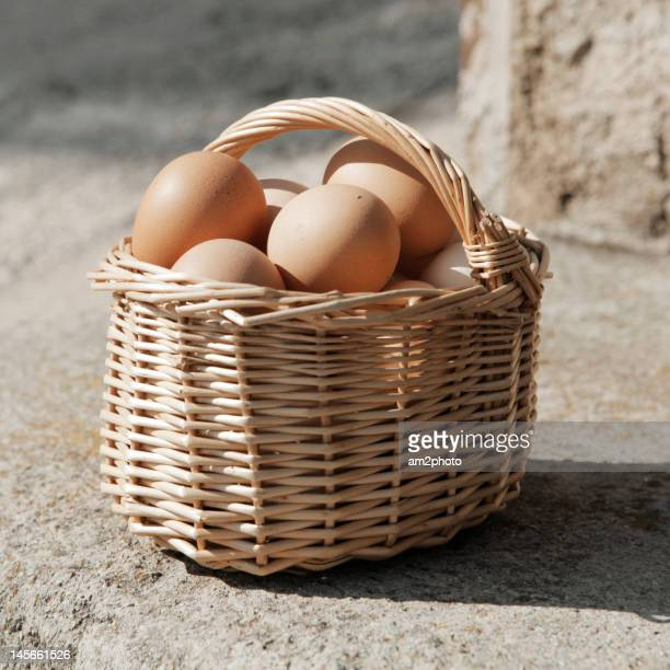 Fresh eggs of hen
