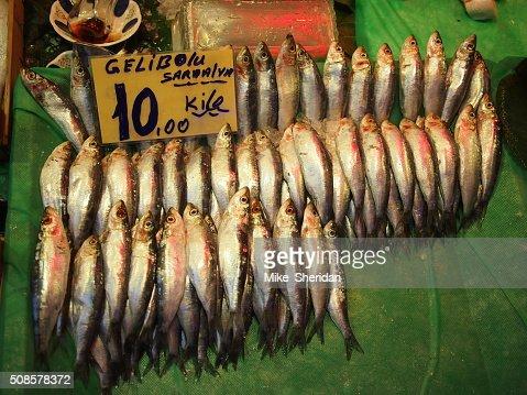 Frisch Fisch zum Verkauf auf Markt : Stock-Foto
