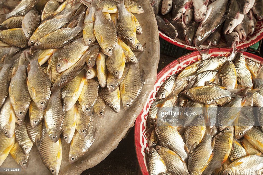 Fresh fish in rural market : Stock Photo