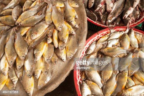 Pescado fresco en el campo mercado : Foto de stock