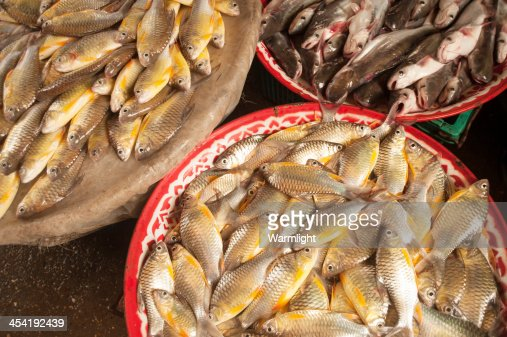 Peixe fresco no mercado rural : Foto de stock