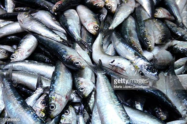 Supermarket fish stock photos and pictures getty images for Fresh fish company