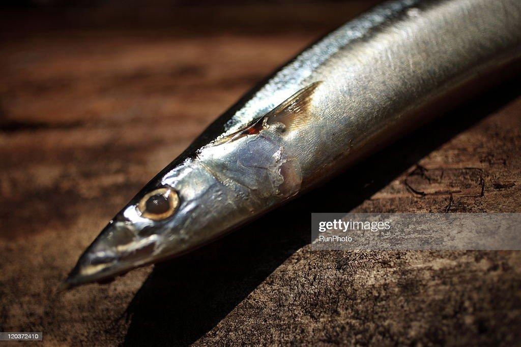 Fresh  fish : Stock Photo