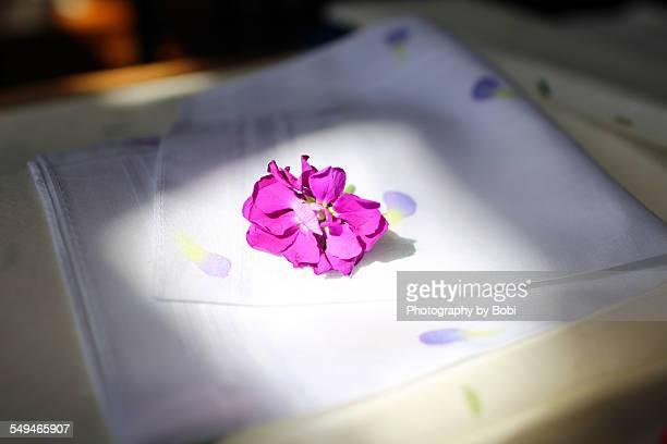Fresh flower on the Handkerchief with light