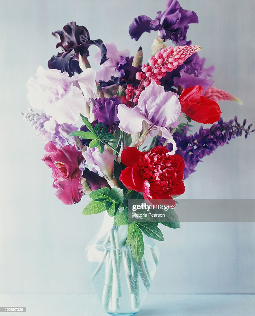 Fresh flowers in a vase. : Stock Photo