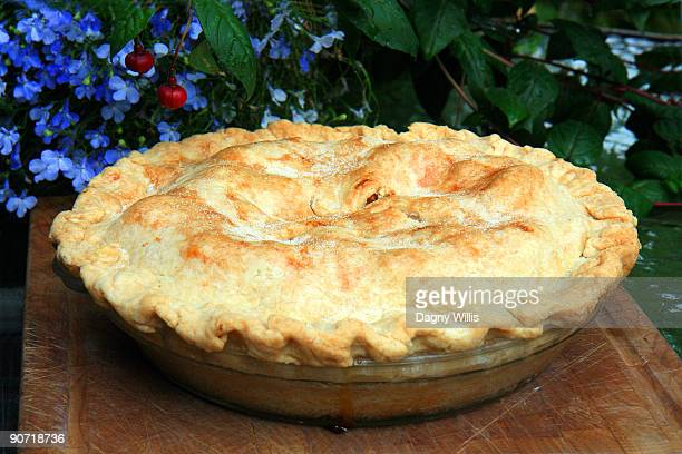 Fresh fruit pie cools outdoors.