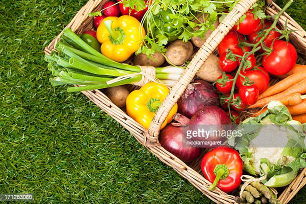 Fresh garden vegetables in a wicker picnic basket