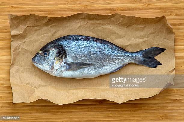 Fresh greek sea bream