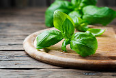 Fresh green basil on the wooden table, selective focus