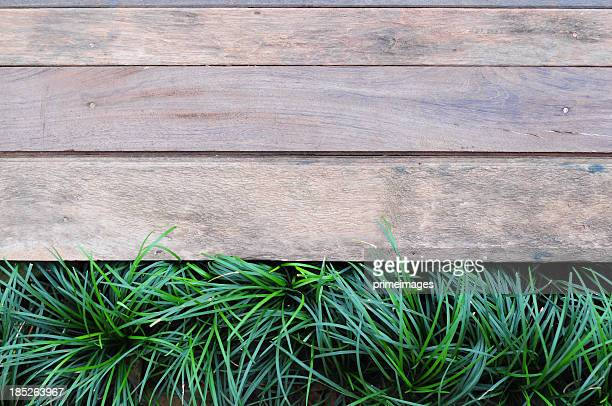 Fresh green grass on Wood background