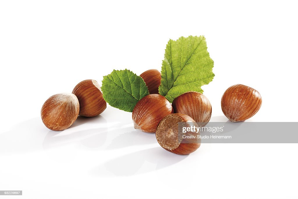 Fresh hazelnuts and leaves on white background