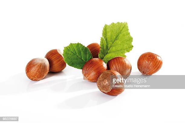 Fresh hazelnuts and leaves on white background