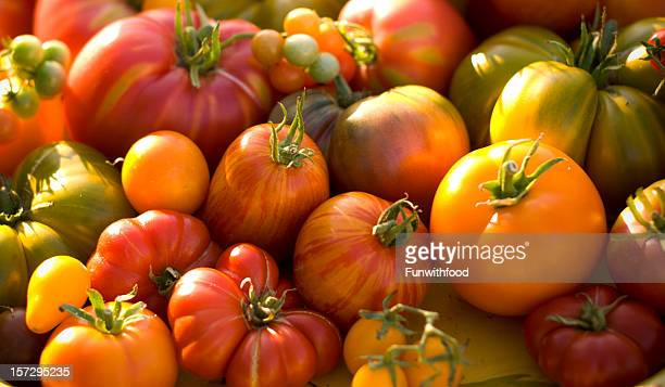 Fresh Heirloom Tomatoes Homegrown Vegetables Background, Farmer's Market Organic Produce