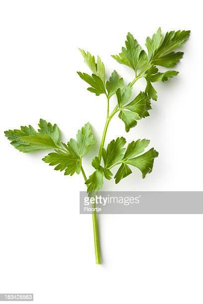 Fresh Herbs: Celery