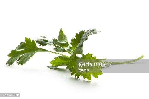 Fresh Herbs: Coriander