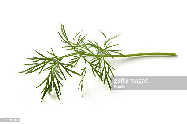 Fresh Herbs: Dill