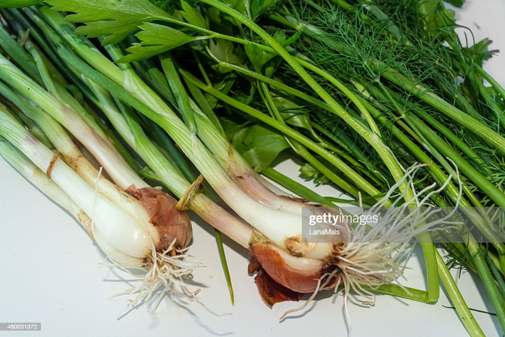 Fresh herbs on a white background : Stock Photo