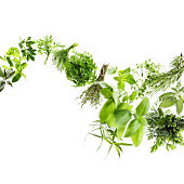 Huge file with collection of fresh herbs in motion, studio shot, selective focus for a 3D effect.