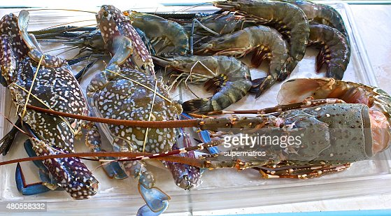 Fresh large shrimp, crabs and lobster : Stock Photo