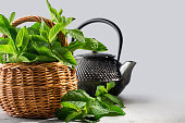 fresh mint in a wicker basket and tea pot, on a graduated background with space for text