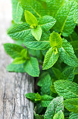 Fresh mint leaf,  lemon balm herb on wooden background with copyspace, close up'n