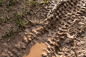 A close-up image of a mountain bike's tyre tracks in wet mud and grass.