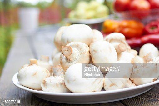 fresh mushrooms : Stock Photo