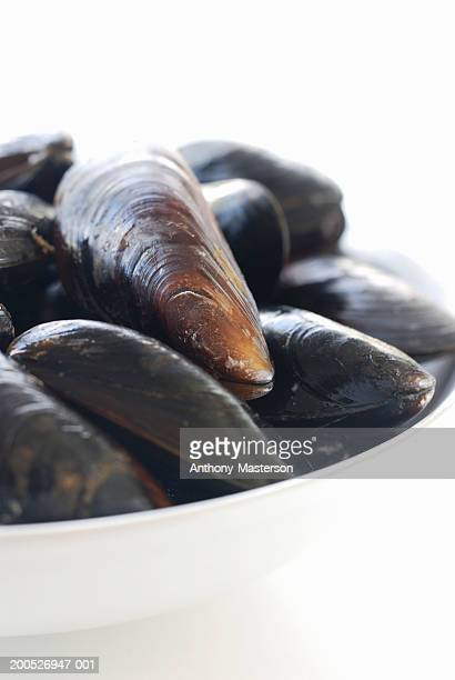 Fresh mussels in white bowl