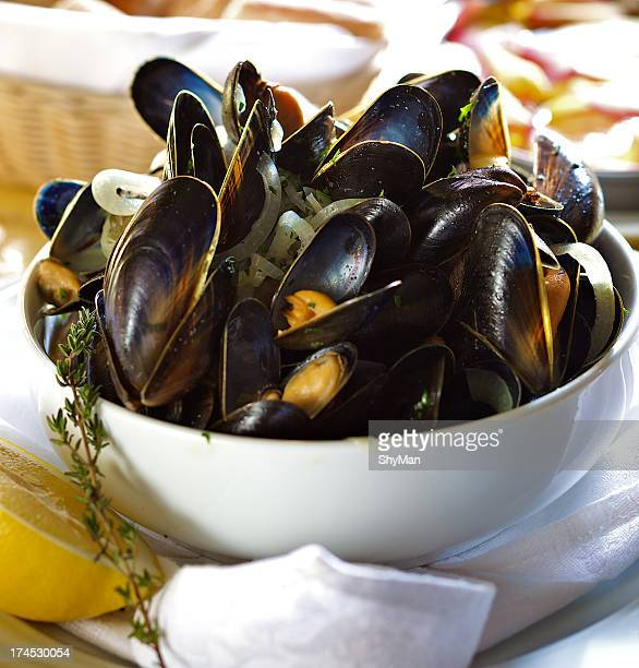 Fresh mussels in white wine