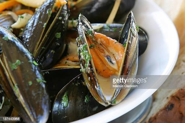 Fresh mussels mariniere