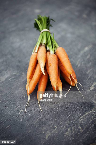 Fresh organic carrots just picked from ground