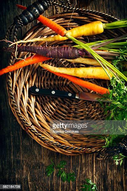 Fresh Organic Heirloom Carrot