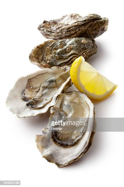 Fresh oysters on the half shell and lemon wedge
