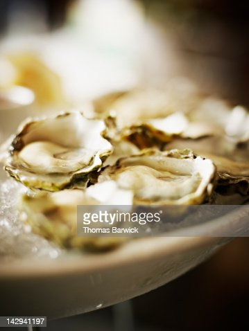 Fresh oysters on the half shell : Stock Photo
