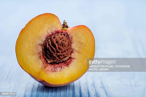 Fresh peach half