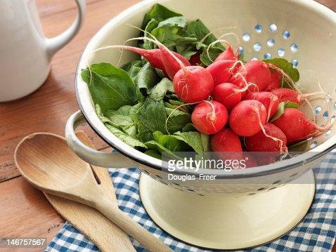 Fresh picked and washed Radishes : Stock Photo