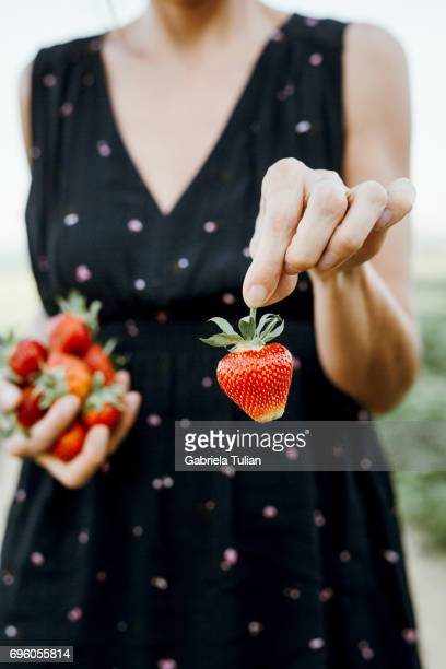 Fresh picked strawberries hold in woman's hand