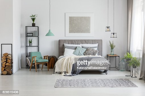 Fresh plants in room : Stock Photo