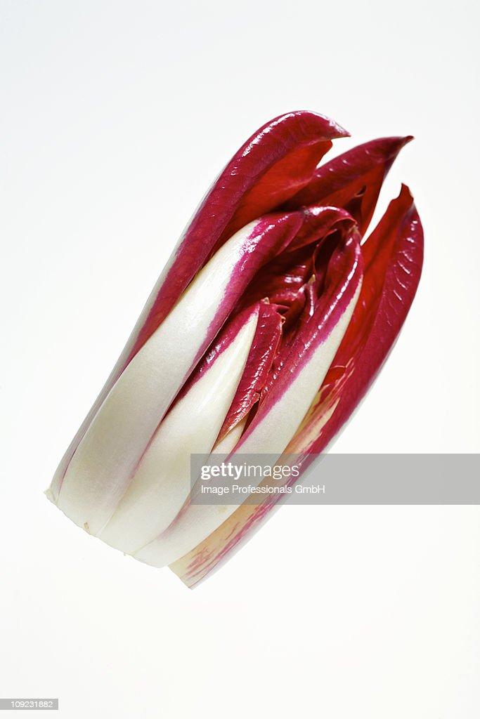 Fresh radicchio against white background, close-up