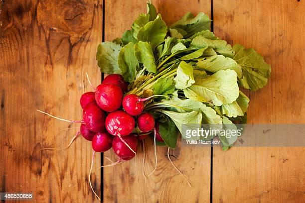 fresh radish on the wood background