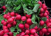 Fresh radishes in market oh Birmingham city center