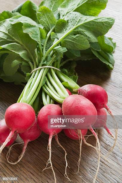 Fresh radishes with green stems