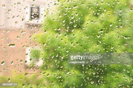 Fresh rain drops in window glass : Stock Photo