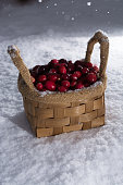 Fresh red cranberry on white snow, wintertime, healthy food, new harvest