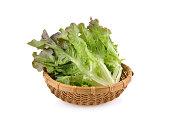 fresh red oak lettuce in bamboo basket on white background