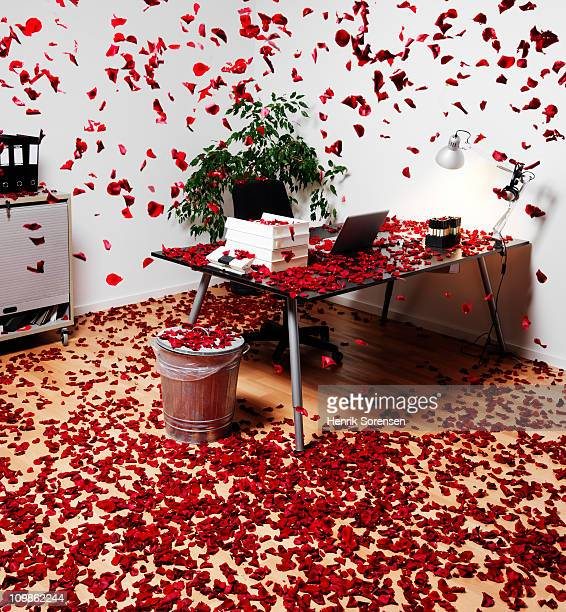 Fresh red rose petals raining in an office