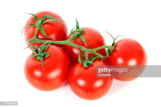 Vine Tomatos fresca roja sobre fondo blanco